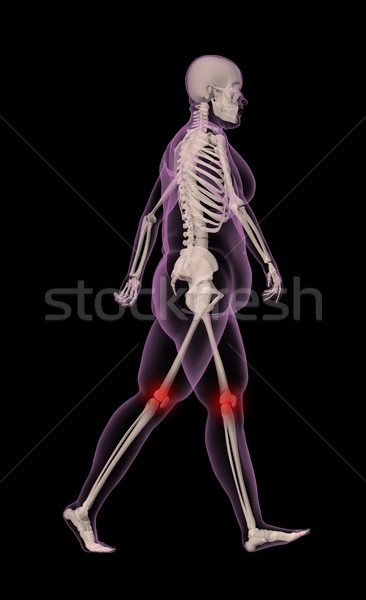 Overweight female skeleton walking Stock photo © kjpargeter
