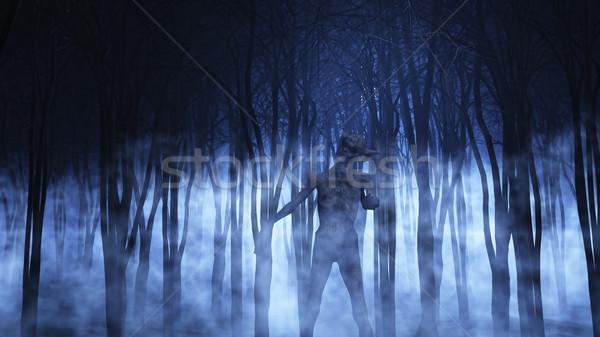 3D demoniczny rysunku mglisty lasu 3d Zdjęcia stock © kjpargeter