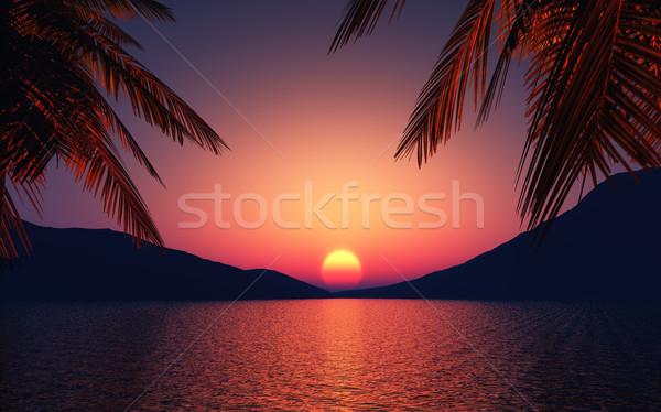 3d render oceaan zonsondergang hemel palmbomen boom Stockfoto © kjpargeter