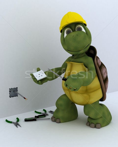 tortoise electrical contractor Stock photo © kjpargeter