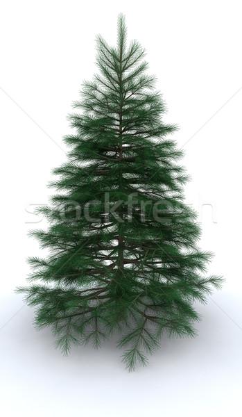 Kerstboom 3d render hout winter christmas Stockfoto © kjpargeter