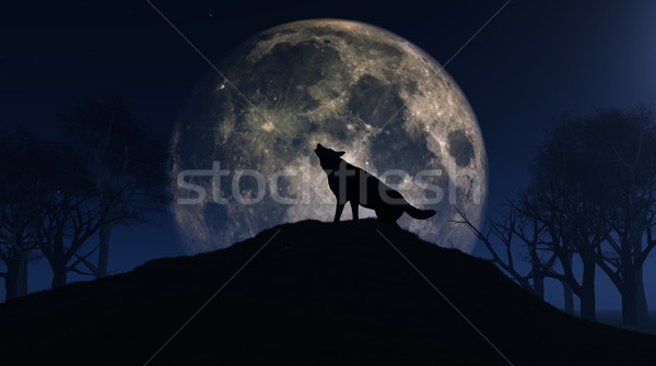 Wolf howling at the moon Stock photo © kjpargeter