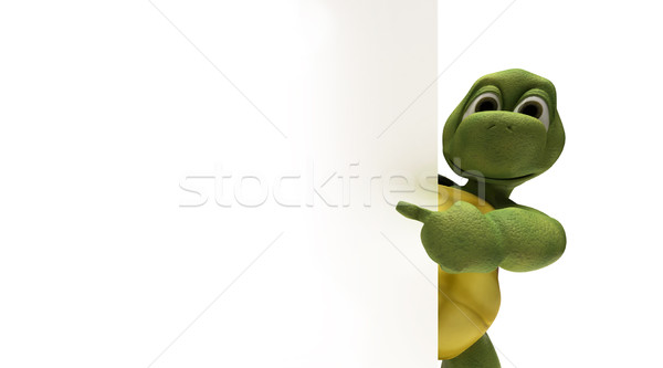 Tortoise with a blank white sign Stock photo © kjpargeter