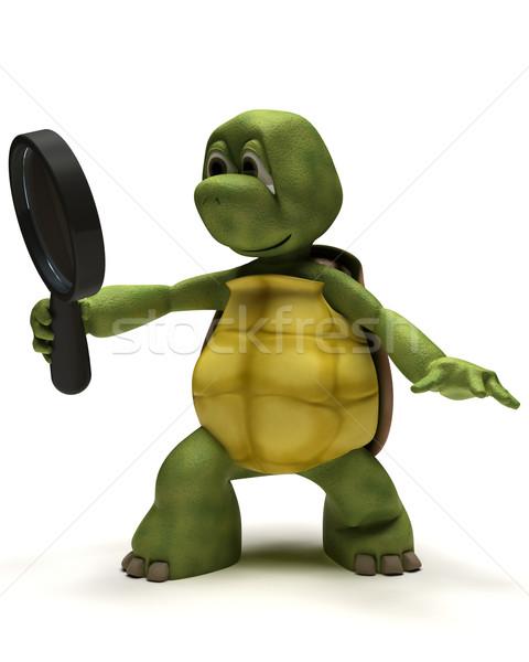 черепаха увеличительное стекло 3d визуализации океана оболочки поиск Сток-фото © kjpargeter
