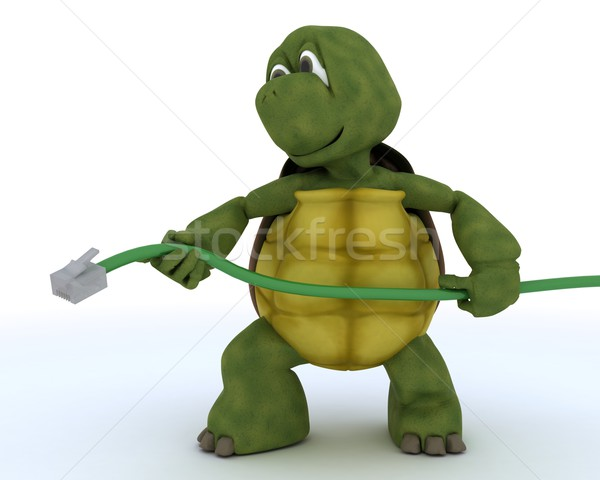 tortoise with a RJ1 cable Stock photo © kjpargeter
