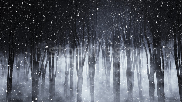 3D foggy forest on a snowy night Stock photo © kjpargeter
