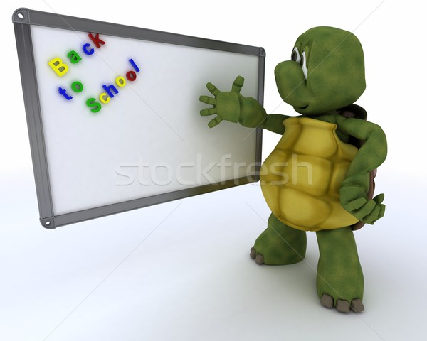 Tortue blanche classe chambre marqueur bord Photo stock © kjpargeter