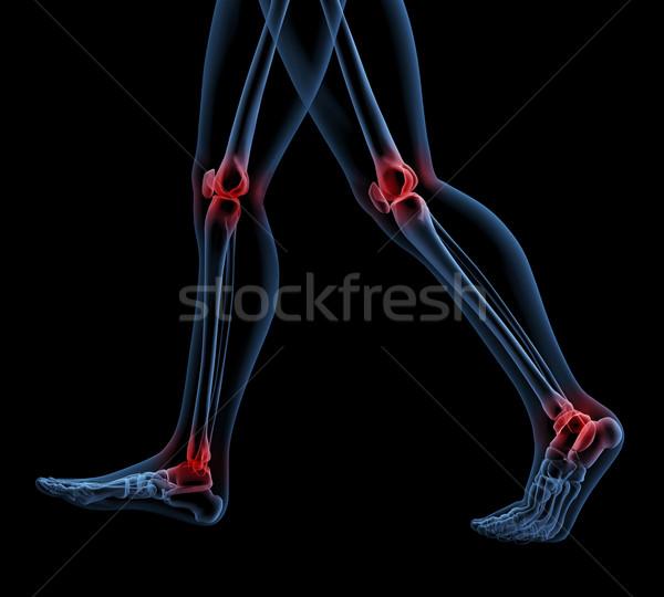 Esqueleto piernas caminando 3d interior Foto stock © kjpargeter
