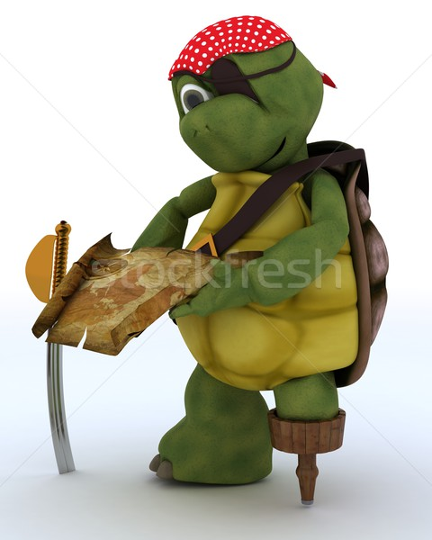 Stock photo: Tortoise dressed as a pirate