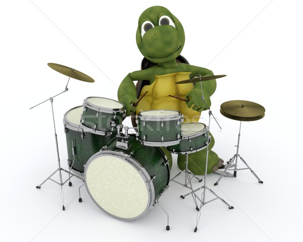 tortoise playing the drums Stock photo © kjpargeter