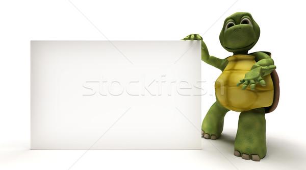 亀 白 にログイン 3dのレンダリング 海 カード ストックフォト © kjpargeter