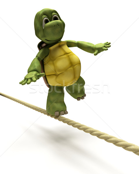 Tortoise balancing on a tight rope Stock photo © kjpargeter