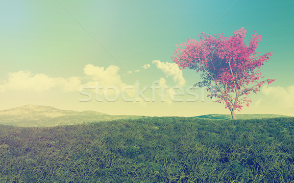 Maple tree landscape with vintage effect Stock photo © kjpargeter