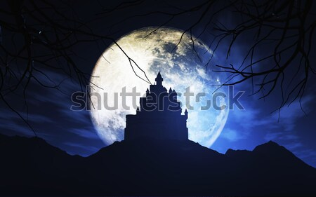 3D spooky castle against a moonlit sky Stock photo © kjpargeter