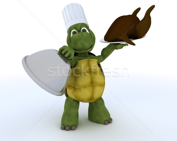 tortoise chef with a chicken Stock photo © kjpargeter