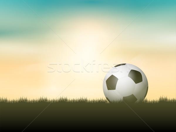 Soccer ball or football nestled in grass Stock photo © kjpargeter