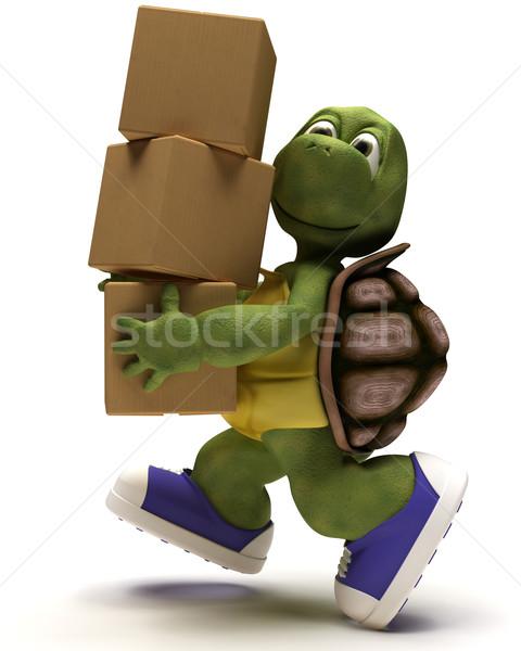 Teknősbéka karikatúra csomagol 3d render Stock fotó © kjpargeter