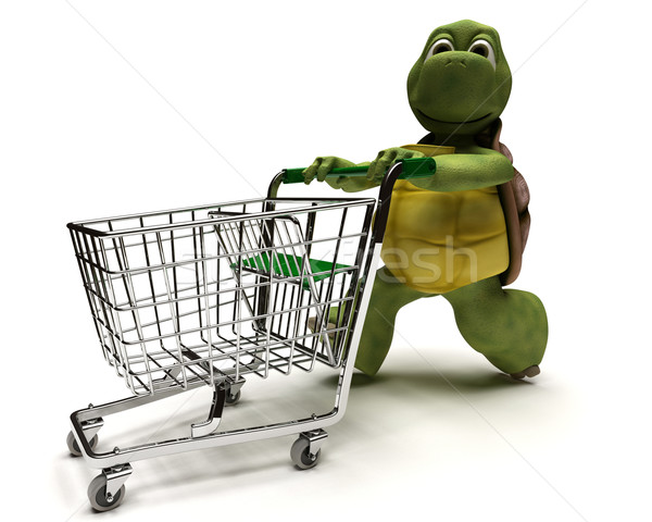 Tortoise with a shopping cart Stock photo © kjpargeter