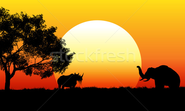 African safari scene at sunset Stock photo © kjpargeter