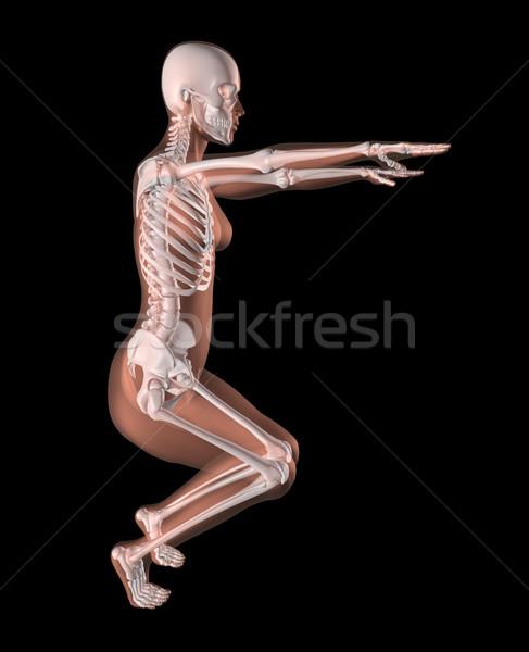 Stock fotó: Női · csontváz · jóga · pozició · 3d · render · orvosi