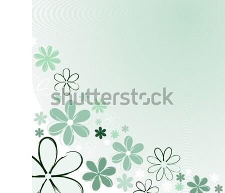 Foto stock: Não · descrição · flores · primavera · planta · vetor