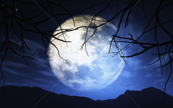 3D landscape with moonlit sky Stock photo © kjpargeter