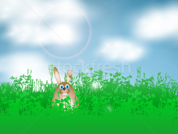 Easter bunny in grass Stock photo © kjpargeter