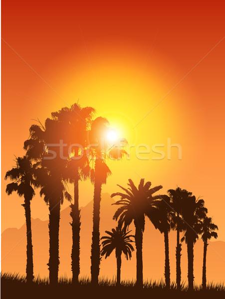 Stock fotó: Trópusi · tájkép · sziluettek · pálmafák · naplemente · égbolt