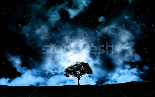 Landscape at night against space sky Stock photo © kjpargeter