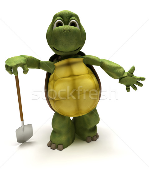 tortoise with a spade digging Stock photo © kjpargeter