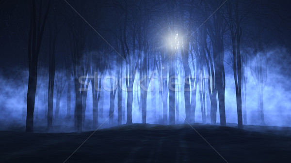 3D foggy spooky forest Stock photo © kjpargeter