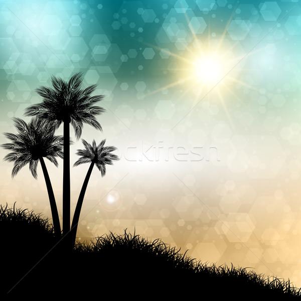Streszczenie lata palm sylwetki plaży trawy Zdjęcia stock © kjpargeter