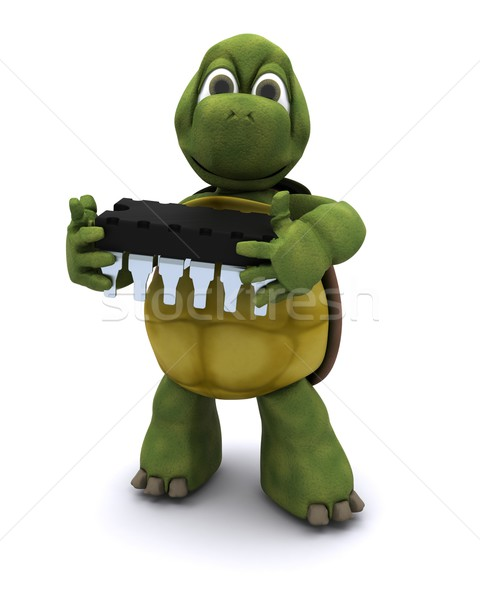 Stock photo: tortoise with a micro chip