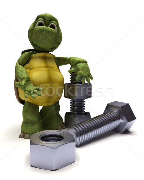 tortoise with a nut and bolt Stock photo © kjpargeter