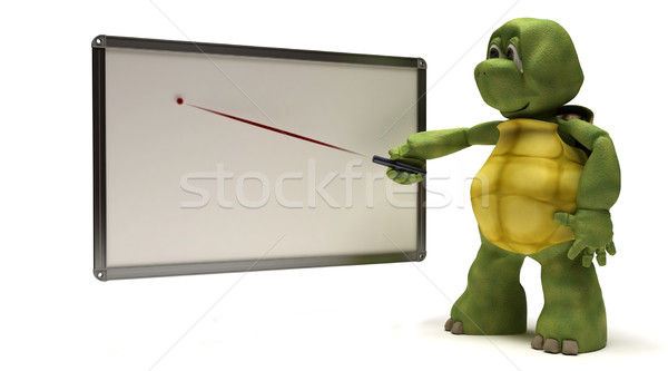 Tortoise with blank white board Stock photo © kjpargeter