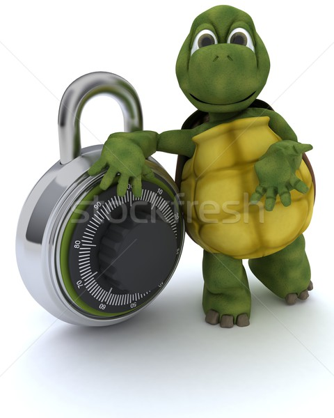 tortoise with combination padloack Stock photo © kjpargeter