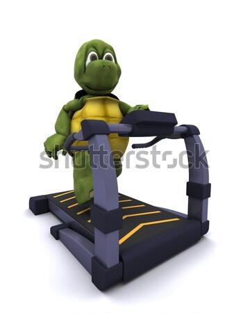 Teknősbéka fut futópad 3d render fitnessz tornaterem Stock fotó © kjpargeter