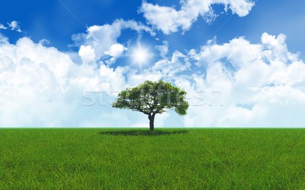 Meşe ağacı çimenli manzara 3d render ağaç bulutlar Stok fotoğraf © kjpargeter