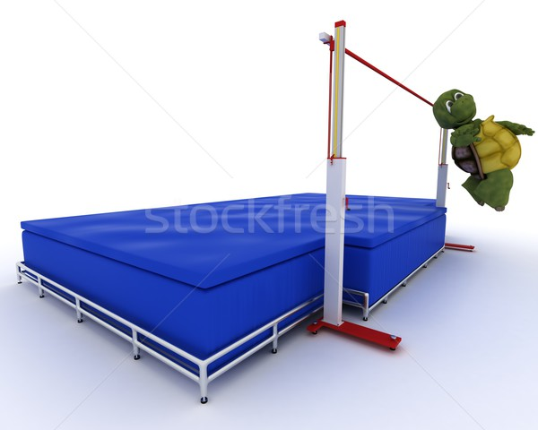 tortoise competing in  Stock photo © kjpargeter