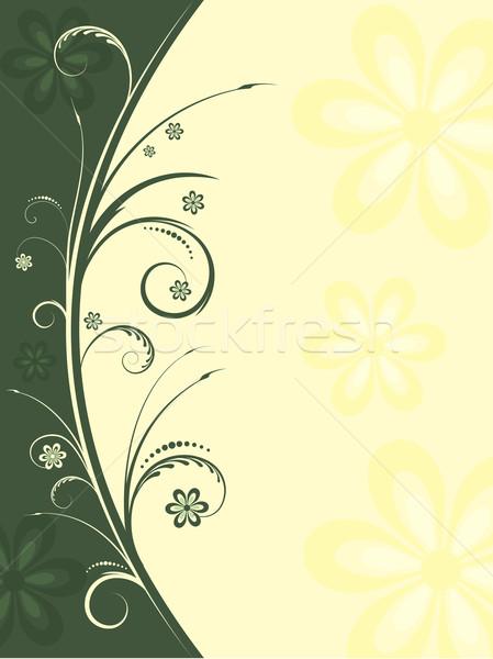 Floral flores primavera planta vector ilustración Foto stock © kjpargeter