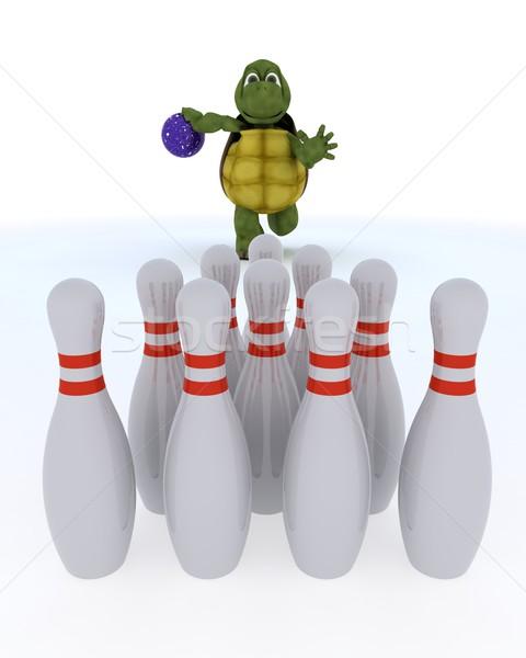 Teknősbéka tíz tő bowling 3d render víz Stock fotó © kjpargeter