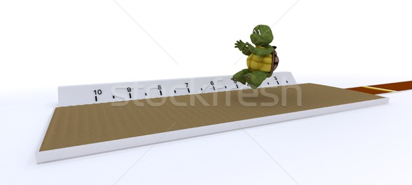 tortoise competing in long jump Stock photo © kjpargeter