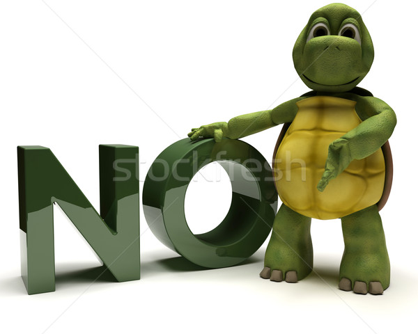 Tortoise with no sign Stock photo © kjpargeter