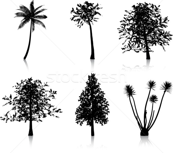 Tree silhouettes Stock photo © kjpargeter