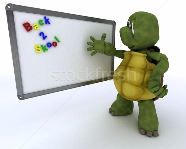 черепаха белый класс комнату маркер совета Сток-фото © kjpargeter