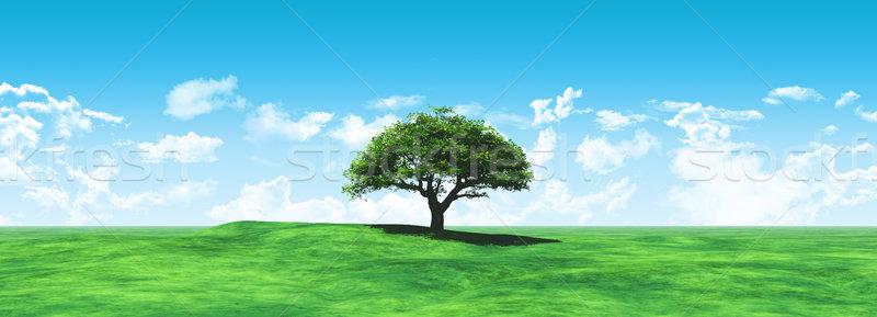 Breedbeeld boom landschap 3d render hemel wolken Stockfoto © kjpargeter