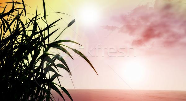 3D травянистый пейзаж 3d визуализации трава природы Сток-фото © kjpargeter