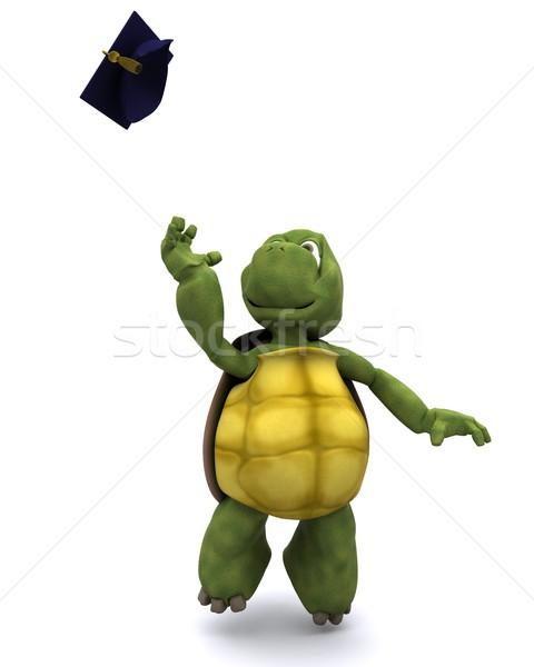 tortoise celebrating graduation Stock photo © kjpargeter