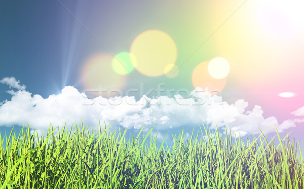 3D grassy landscape with retro effect Stock photo © kjpargeter