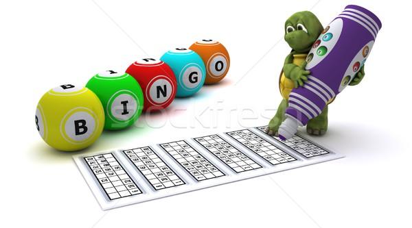 Teknősbéka játszik bingó 3d render toll óceán Stock fotó © kjpargeter